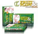 Fruit Plant Obat Pelangsing Badan